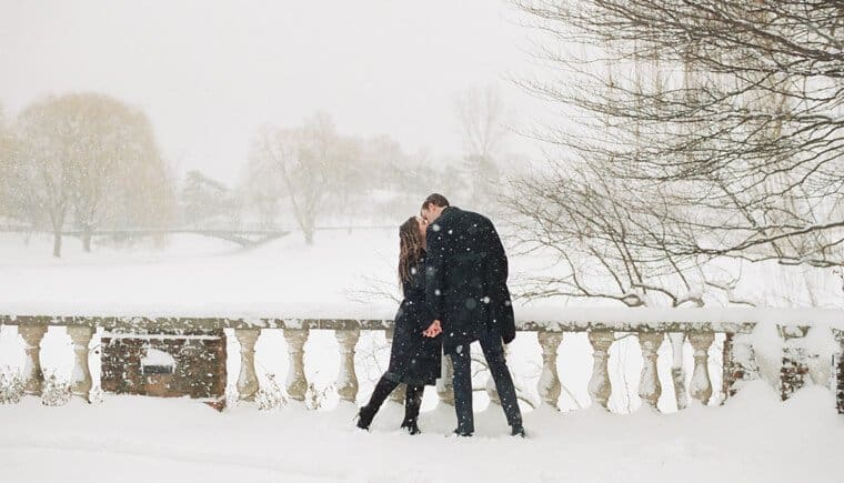 A romantic winter engagement at the Chicago Botanic Garden