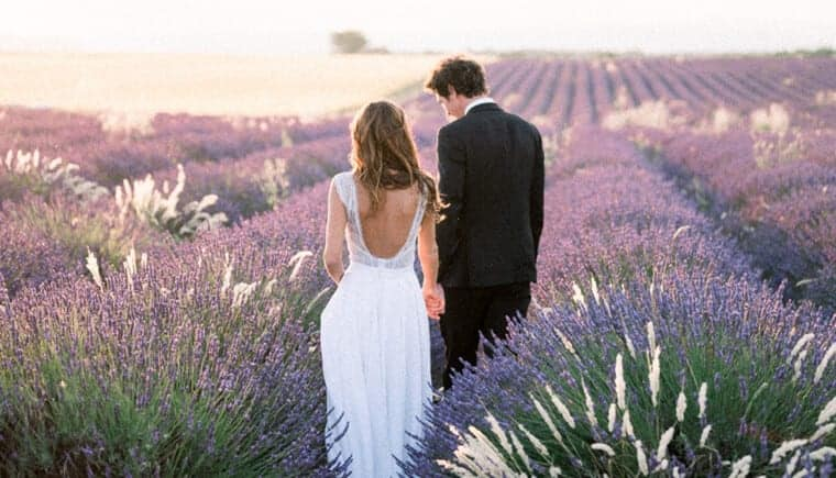 Enchanting Lavender Fields in Provence